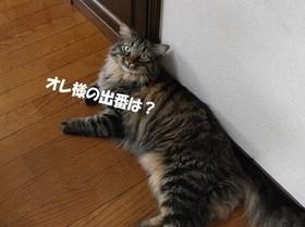 Dsc_8639_2